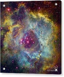 Rosette Nebula Ngc 2244 In Monoceros Acrylic Print by Filipe Alves