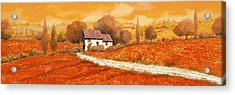 Rosso Papavero Acrylic Print by Guido Borelli