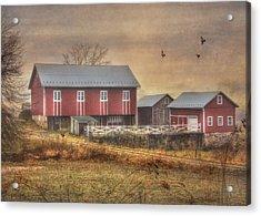 Route 419 Barn Acrylic Print by Lori Deiter