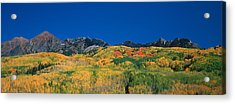 Ruby Range Color Of Fall Acrylic Print by Dusty Demerson