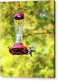 Ruby-throated Hummingbird 2 - Impasto Acrylic Print by Steve Harrington