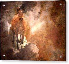 Run With Thunder Acrylic Print by Ron  McGinnis