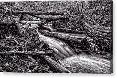 Rushing Stream - Bw Acrylic Print by Christopher Holmes