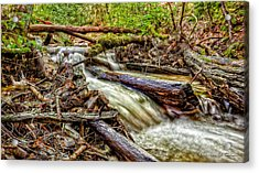 Rushing Stream Acrylic Print by Christopher Holmes