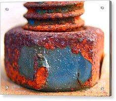 Rusty Screw And Bolt Acrylic Print by Yali Shi