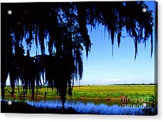 Sabine National Wildlife Refuge Acrylic Print by Thomas R Fletcher