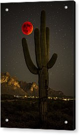 Saguaro And The Super Bloodmoon Acrylic Print by Chuck Brown