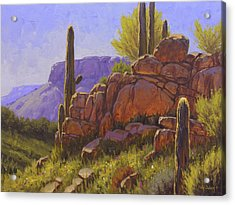 Saguaro Sunshine Acrylic Print by Cody DeLong
