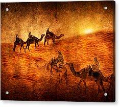 Sahara Acrylic Print by Svetlana Sewell