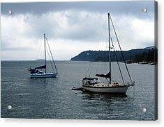 Sailboats In Bar Harbor Acrylic Print by Linda Sannuti
