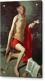 Saint Jerome Acrylic Print by Georges de la Tour