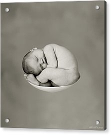 Sally Pearl Acrylic Print by Anne Geddes