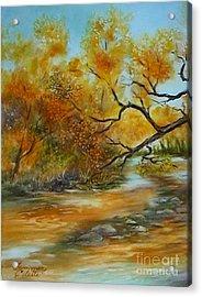San Pedro River Acrylic Print by Summer Celeste