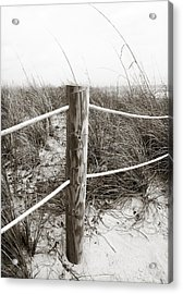 Sand And Grass Acrylic Print by Julie Palencia