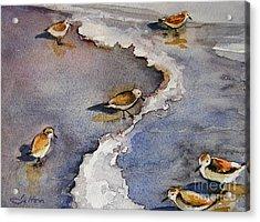 Sandpiper Seashore Acrylic Print by Julianne Felton