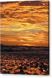 Sanibel Island Acrylic Print by Nick Flavin