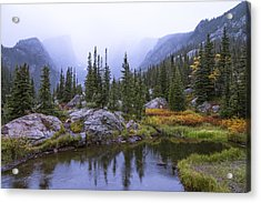 Saturated Forest Acrylic Print by Chad Dutson