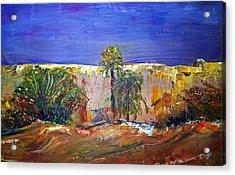 Saudi Arabian Desert Acrylic Print by Patricia Taylor