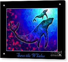Save The Whales Acrylic Print by Nick Gustafson