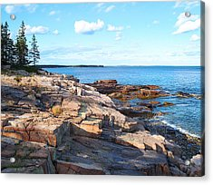 Schoodic Shoreline  Acrylic Print by Scott  Bricker