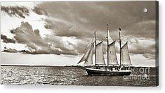 Schooner Pride Tallship Charleston Sc Acrylic Print by Dustin K Ryan