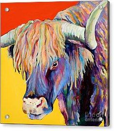 Scotty Acrylic Print by Pat Saunders-White