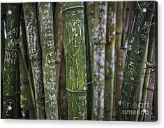 Scratched Bamboo Acrylic Print by Edward Fielding
