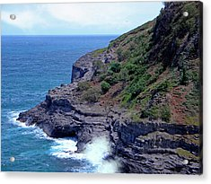 Sea Cave And Nesting Boobies Acrylic Print by Frank Wilson