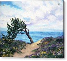 Sea Coast At Half Moon Bay Acrylic Print by Laura Iverson