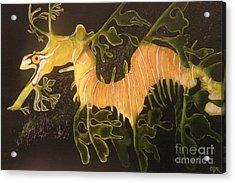 Sea Dragon Acrylic Print by Carol Northington