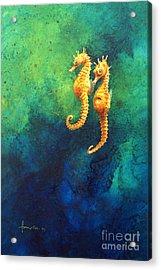 Sea Horses Acrylic Print by John Francis