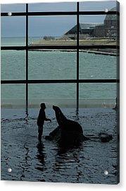 Sea Lion II Acrylic Print by Anna Villarreal Garbis