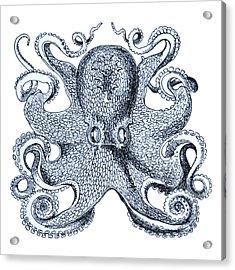 Sea Octopus Coastal Decor Acrylic Print by Erin Cadigan