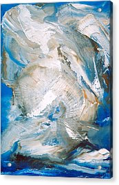 Sea Shells Acrylic Print by M Diane Bonaparte