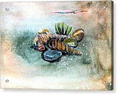 Sea Shells Acrylic Print by Mindy Newman