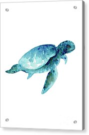 Sea Turtle Abstract Painting Acrylic Print by Joanna Szmerdt