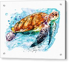 Sea Turtle  Acrylic Print by Marian Voicu