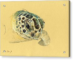 Sea Turtle Watercolor Acrylic Print by Juan  Bosco