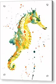 Seahorse  - Yellow Seahorse Acrylic Print by Alison Fennell