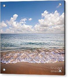 Seascape Acrylic Print by Carlos Caetano