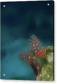 Seascape Drawing Acrylic Print by Jean Noren
