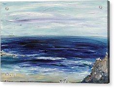 Seascape With White Cats Acrylic Print by Regina Valluzzi