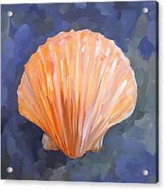 Seashell I Acrylic Print by Jai Johnson