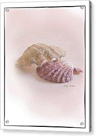 Seashell Love Acrylic Print by Betty LaRue