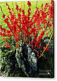 Seasons Greetings Acrylic Print by Xueling Zou