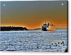 Seattle Mass Transit Acrylic Print by Frank Larkin