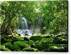 Secret Paradise - Hidden Appalachian Waterfall Acrylic Print by Matt Tilghman