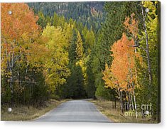 Selkirk Color Acrylic Print by Idaho Scenic Images Linda Lantzy