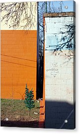 Separated Acrylic Print by Ross Odom