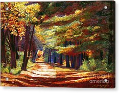 September Song Acrylic Print by David Lloyd Glover
